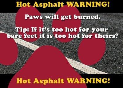 Hot Asphalt Warning image for article